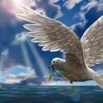 Jesucristo Y La Ley De Dios – Educación para Exaltación