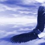 Dios encamina tu destino