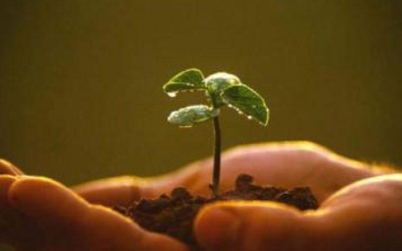 Creciendo en la relación con Dios
