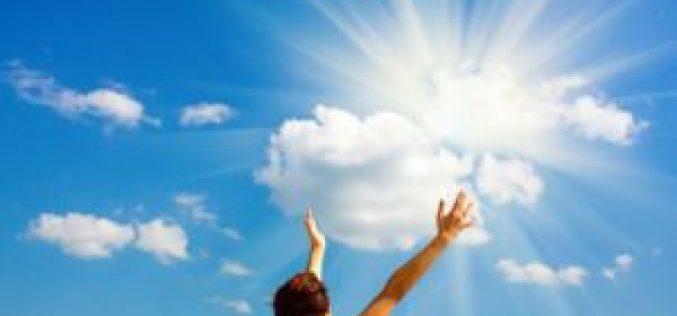 El poder  transformador del Espíritu Santo nos permite una vida con frutos