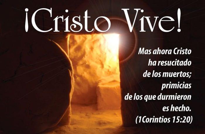 ¡Cristo Vive! ¡Feliz Domingo de Resurrección! | ministros.org