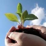 Experimente una vida cristiana dinámica, que crece diariamente
