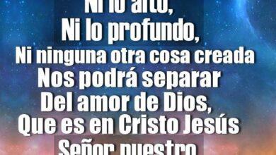 Photo of 30 Versículos con Promesas de Dios para tu Vida