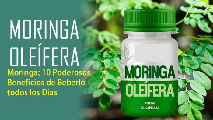 Moringa: 10 Poderosos Beneficios de Beberlo todos los Días